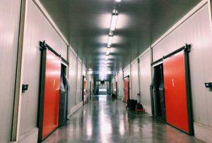 βιομηχανικες πορτες ψυγειων
